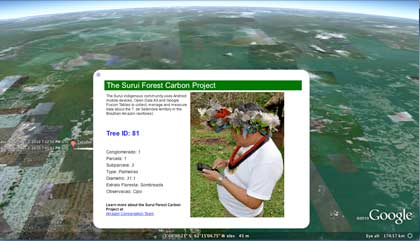 surui-carbon-google-earth-engine